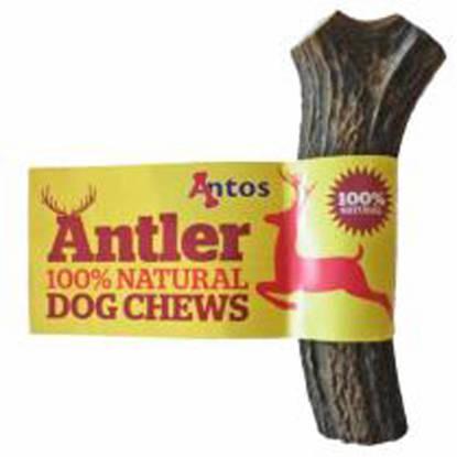 Picture of Antos Antler Dog Chew - Medium (76g-150g)